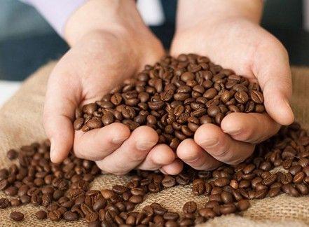 Caffè e solidarietà femminile: in Costa Rica nasce un modello di sviluppo sostenibile