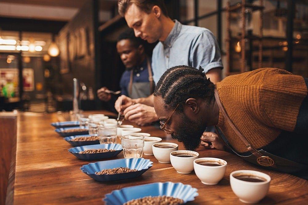Comment suivre une formation dédiée au café