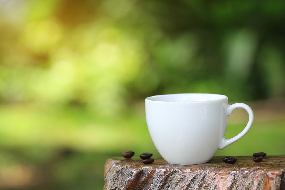 Innovation, Recovery and Sustainability: Ideas for an Eco-Green Café