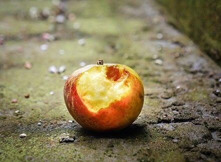 La Francia contro gli sprechi di cibo