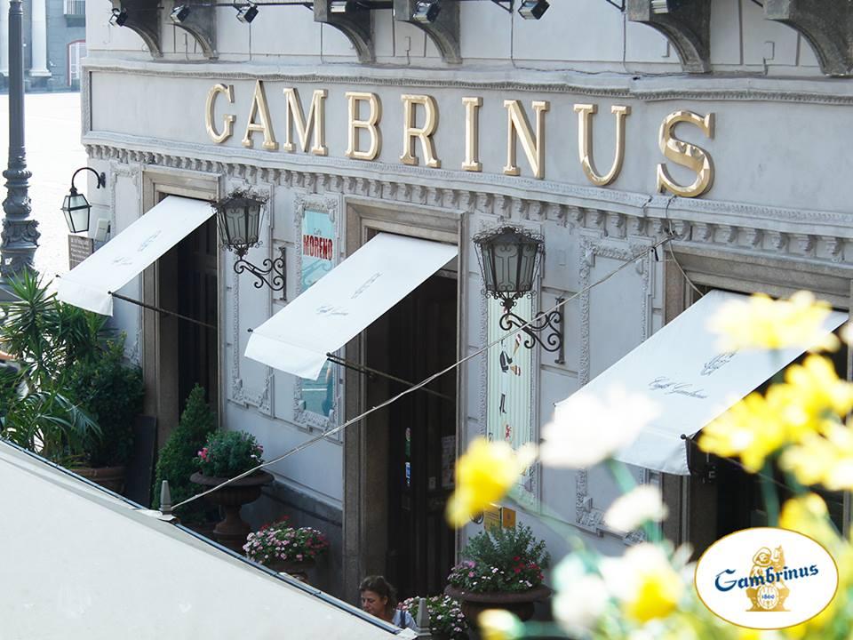 gambrinus_10