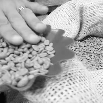 CAFFÈ VERGNANO UNA STORIA DI SCELTE