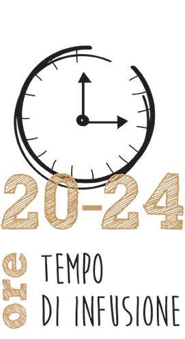20 24 ore di infusione 1