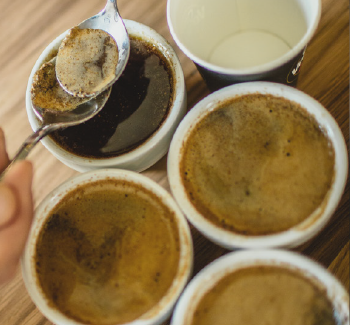 corso-public-cupping