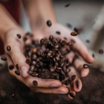 international-coffee-day-progetti-buoni-caffe-vergnano