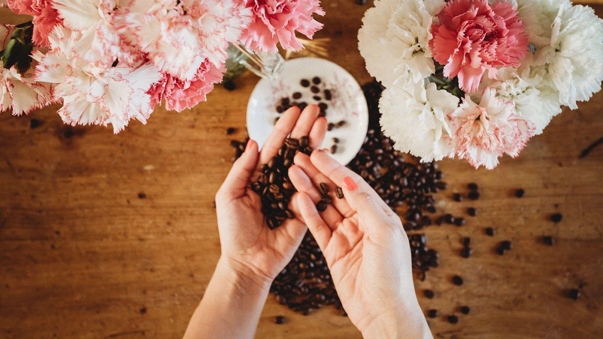 Entra nel mondo di Caffè Vergnano
