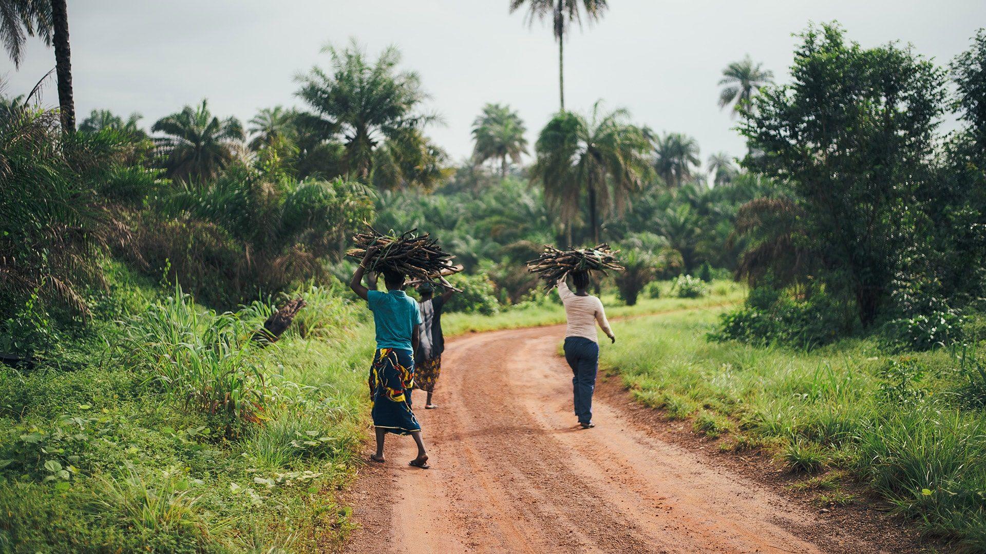 Foto donne in piantagione