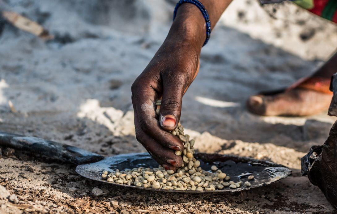 tostatura caffe etiopia